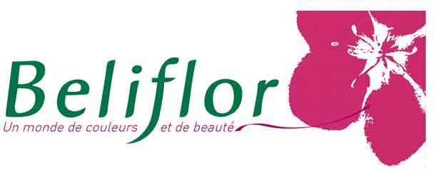 Gant Beliflor